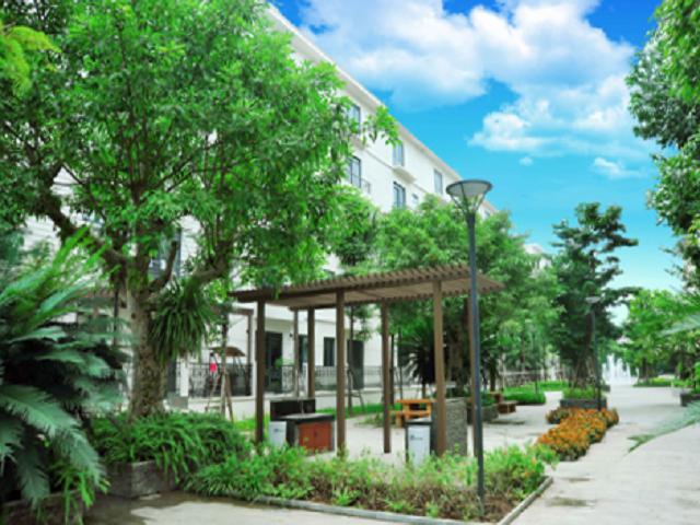 Biệt thự Geleximco không gian sống xanh, tiện nghi giữa lòng Hà Nội